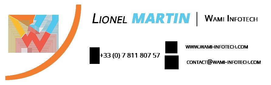 Martin Lionel - WAMI INFOTECH